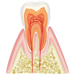 real-teeth001